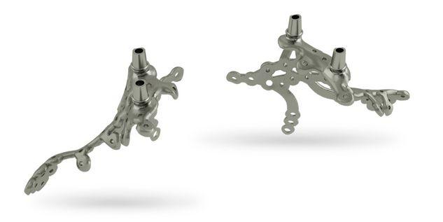 Gerüststruktur | Komplette Gestaltungsmöglichkeiten bei der individuellen Formgebung, auch bei schwierigen Knochen- und Weichgewebeverhältnissen