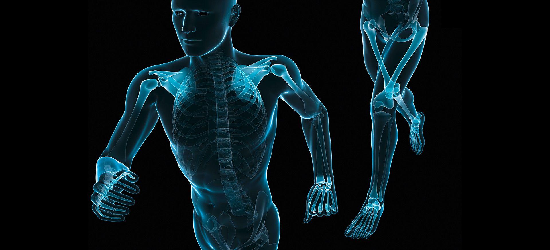 Implantate und Implantatsysteme Traumatologie